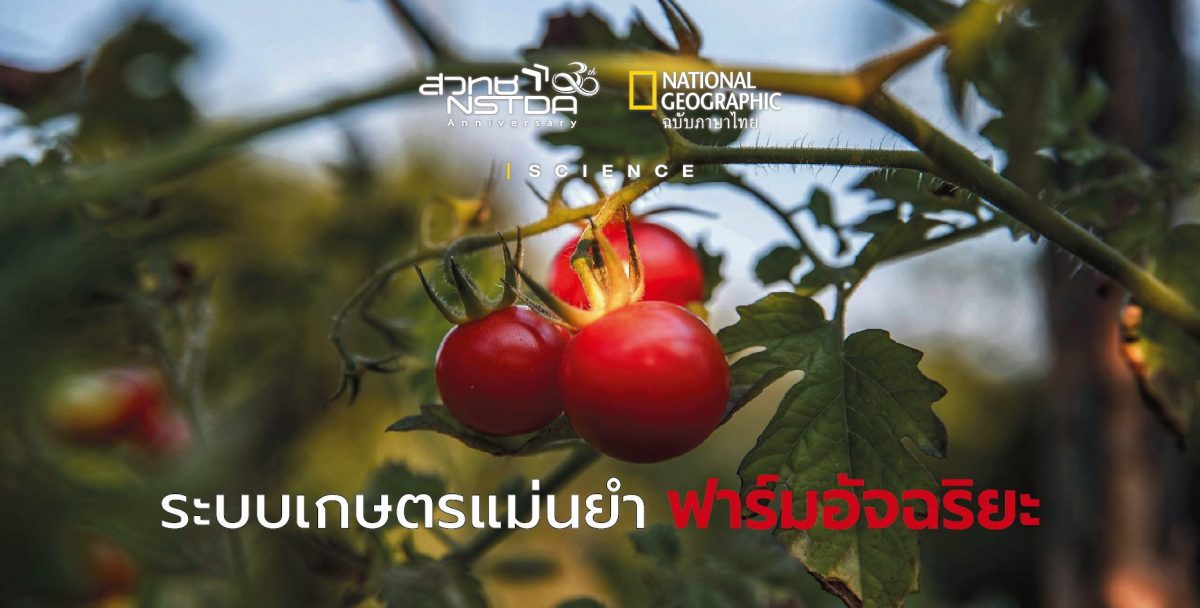 Img-news2